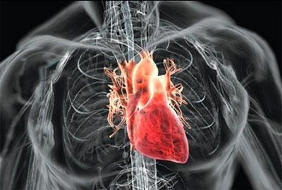 как алкоголь влияет на сердце